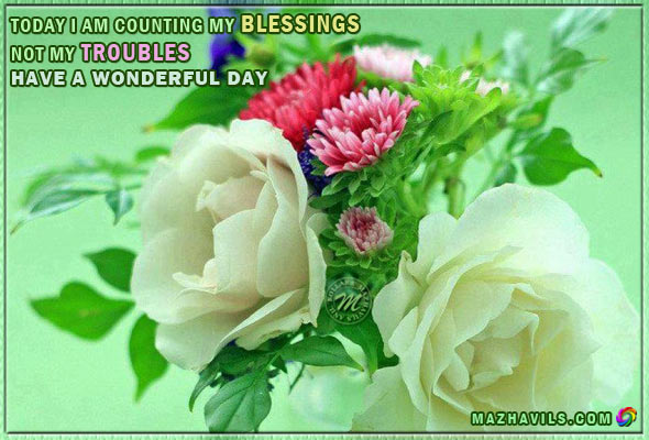 today-i-am-counting-my-blessings-not-my-troubleshave-a-wonderful-day-good-day-quote-2.jpg