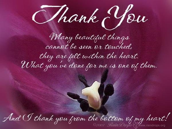 thank-you-19.jpg